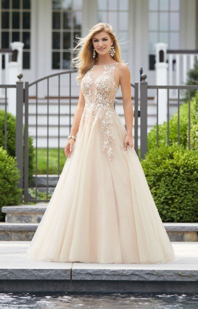 Elegant and Extravagant Sheer Tulle Ballgown